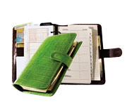 6-hole planner system with green croco-grain leather jacket